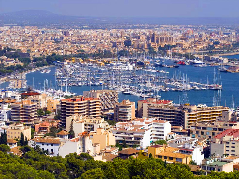 Free tour around Mallorca. Palma Airport Taxi shuttle